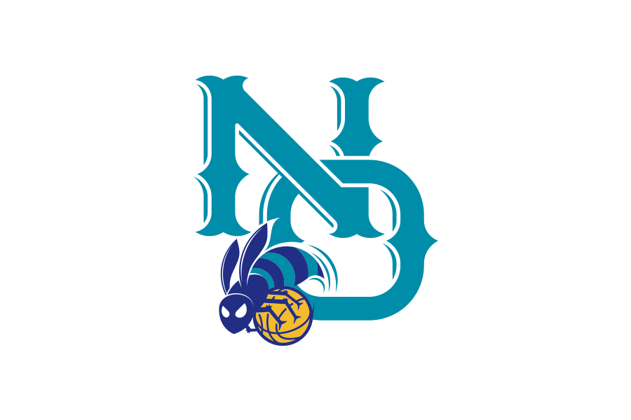 NBA Logo Redesigns: New Orleans Hornets